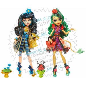 Mattel Monster High R.1300-Rozkvétání exkluziv, více druhů